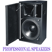 PROFESSIONAL SPEAKERS